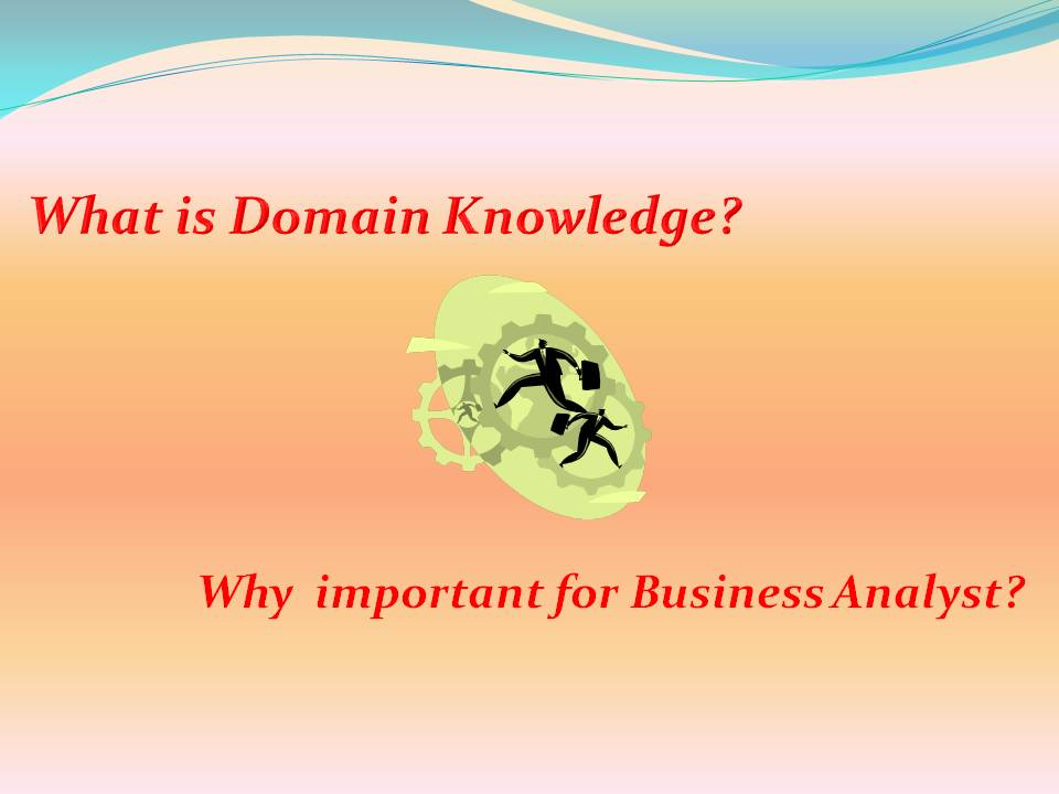 What is domain  knowledge