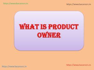 What is Product Owner