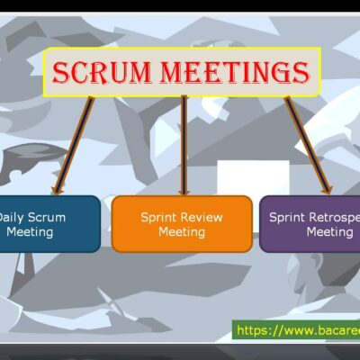 What are Scrum Meetings